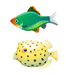 Green tiger barb and boxfish isolated on white vector