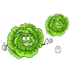 Happy green cartoon cabbage vegetable vector