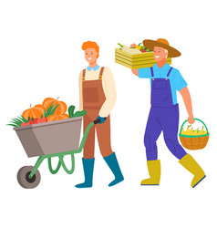 Harvesting man carrying vegetables in box vector