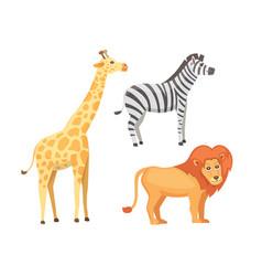 Lion zebra and giraffe cartoon vector