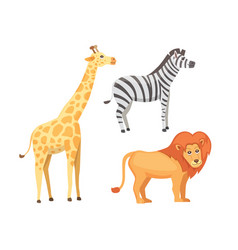lion zebra and giraffe cartoon vector image