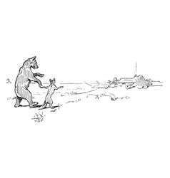 reynard the fox bruins bet vintage vector image