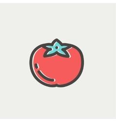 Tomato thin line icon vector image