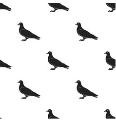 pigeon icon in black style isolated on white vector image vector image