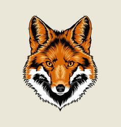 Red Fox Head vector image