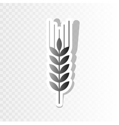 wheat sign spike spica new vector image