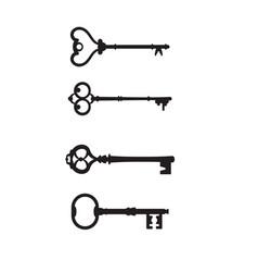 set antique keys for locks different shapes vector image