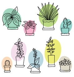 Different flowers in pots vector image