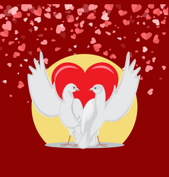 embracing doves with raised wings valentine vector image