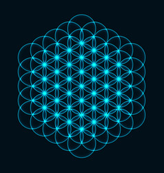 Flower of life sacred geometry symbol of harmony vector