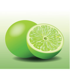 Fresh lemon lime sliced and whole fruit realistic vector