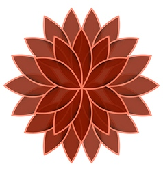 Red flower lotus on white background isolated vector
