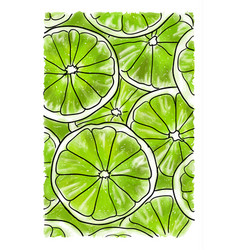 Slices of lime vector