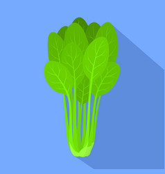 Spinach plant icon flat style vector