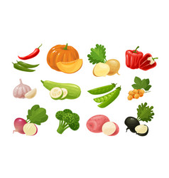 vegetables set of colored icons farm food vector image