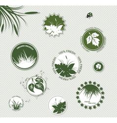 Set of botany badges vector image vector image