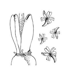 set of hand drawn line art bulb pot flowers vector image vector image
