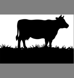 Cow isolated on background vector