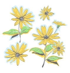 Hand-drawn chamomiles daisies Autumn flowers vector