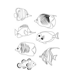 Tropic coral fish coloring pages vector