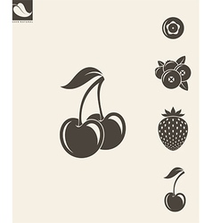Berries Strawberry Cherry Blueberry Cranberry vector image
