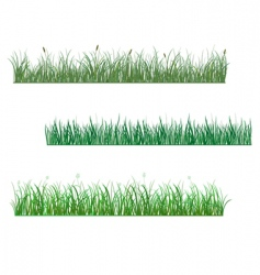 grass patterns vector image vector image