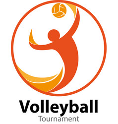volleyball symbol or icon vector image