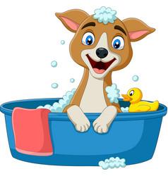 Cartoon dog having a bath vector