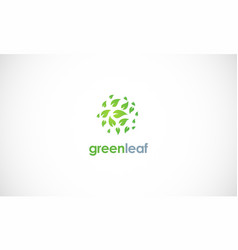 green leaf round logo vector image