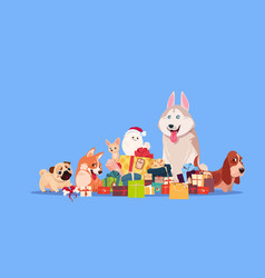 group of cute dog sitting at gifts stack synbol of vector image