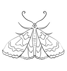 moth sketch on white background vector image