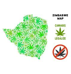 Royalty free cannabis leaves mosaic zimbabwe map vector