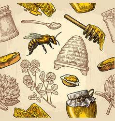 seamless pattern with honey bee hive clover vector image
