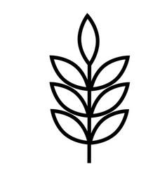 wheat icon vector image