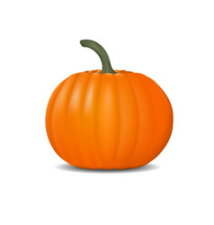pumpkin realistic fresh and orange vector image vector image