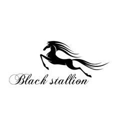 Silhouette of a jumping horse for mascot design vector image vector image