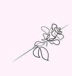 Beautiful rose flower logo vector