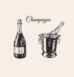 champagne bottle bucket hand drawing vector image