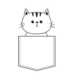 cute cat in the pocket doodle contour linear vector image