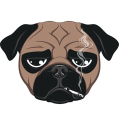 Funny dog vector image