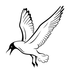 simple seagul isolated on the white vector image vector image