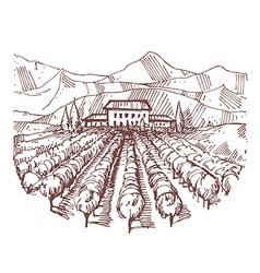 Hand drawn of a vineyard vector image