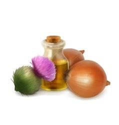 Onion and burdock folk medicine vector image vector image