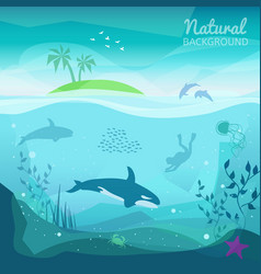 tropical sea natural background vector image
