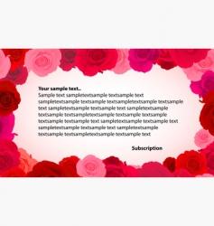 rose greeting card vector image
