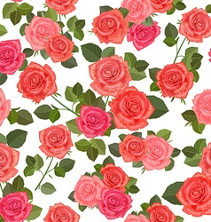 colorful seamless texture with bouquets of roses vector image