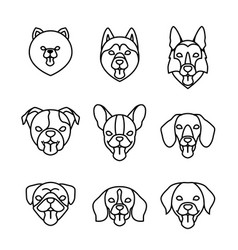 Dogs breeds linear icon set pomeranian spitz pug vector