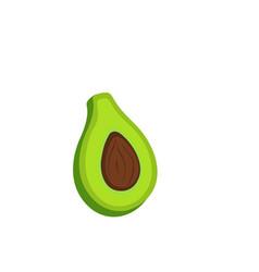 fresh fruit avocado isolated on white background vector image