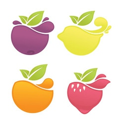 fruit and berry vector image