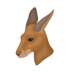Kangaroo icon in cartoon style isolated on white vector
